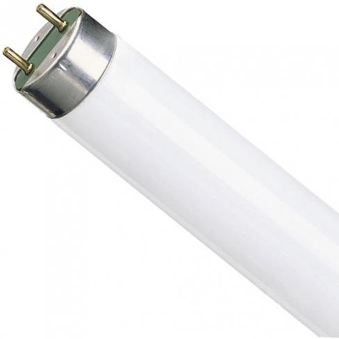 Лампа люминесцентная L 18/640 G13, Osram