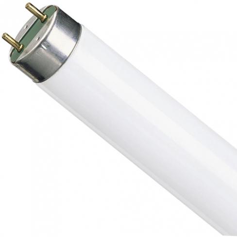 Лампа люм F36W/33/T8 G13, 43491, GE